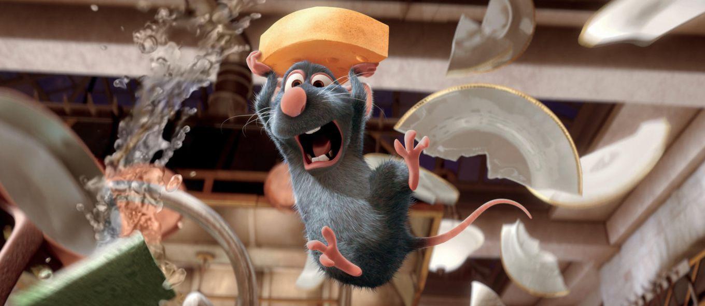 انشا در مورد صحنه ورود یک موش به خانه