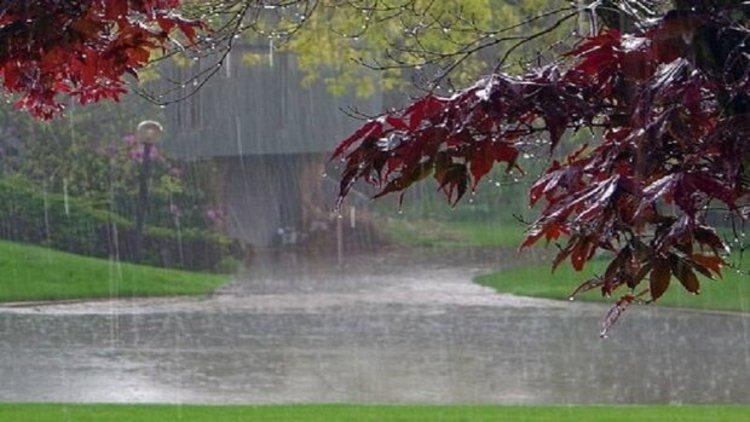 انشا در مورد بوی خاک پس از بارش باران