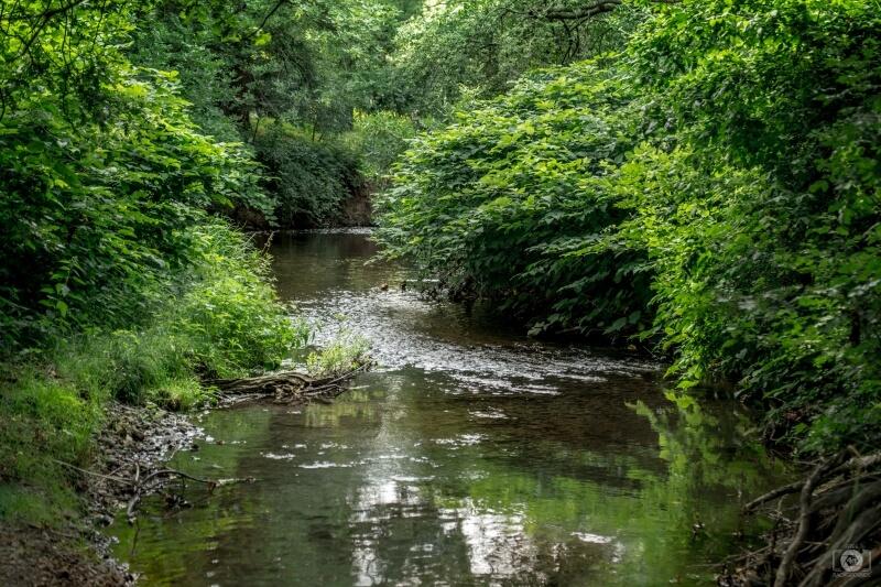 انشا در مورد گذر رودخانه پایه نهم